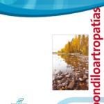 Espondiloartropatías